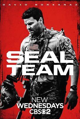 海豹突击队 seal team