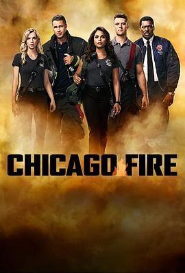 芝加哥烈焰 Chicago Fire