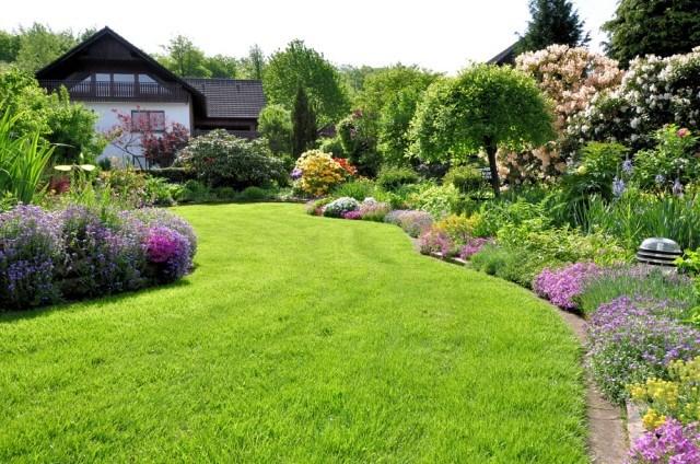 简单几步你就能做出让邻居羡慕的草坪
