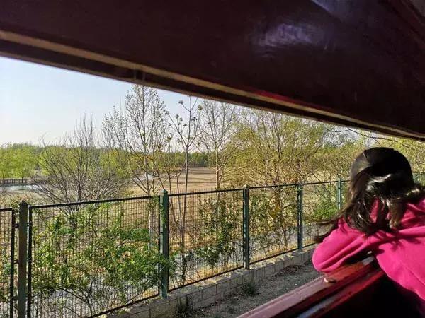 """北京竟藏着一个""""巨无霸""""公园,比颐和园大,比奥森公园人少,关键还免费!"""
