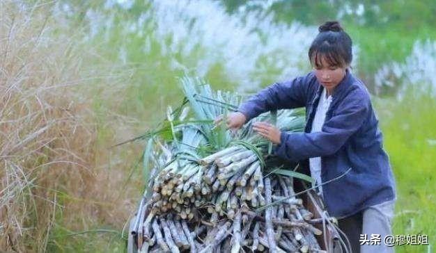 """被央视点名的网红李子柒,真实身份曝光:她根本不是""""仙""""女"""