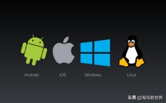 假如操作系统被禁用,中国该怎么办?倪光南院士又说对了